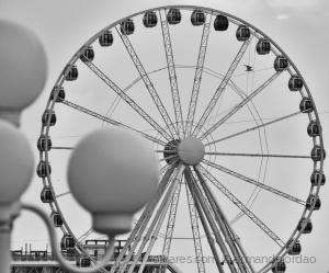 /Voando sobre a roda...