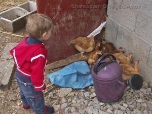 Gentes e Locais/As crianças e os animais