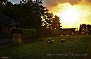 Paisagem Natural/Jantar ao Pôr do sol!