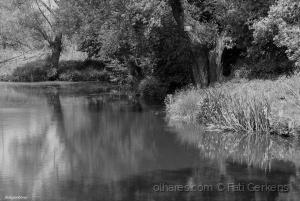 Paisagem Natural/Lago - Kettenis!
