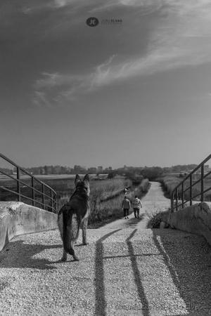 /Guardiã da ponte