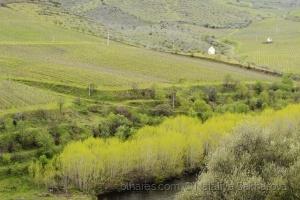 /Uma paisagem do percurso Rota dos Túneis