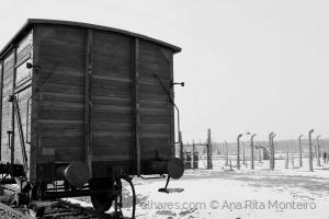 História/Um vagão em Auschwitz