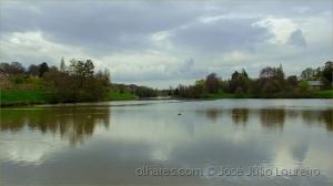 /O lago em dia calmo