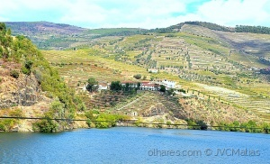 Outros/Nas encostas do Douro!