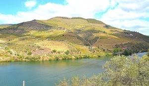 Outros/As belezas do Douro!