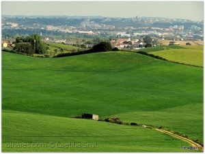 /The green, green grass of home....