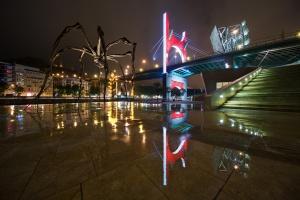 /composição de aranha e ponte