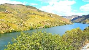 Outros/As belezas do Douro - 3!