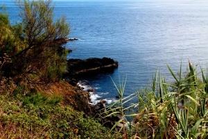 Paisagem Natural/Encantos da minha ilha...........