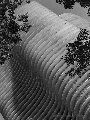 /Curvas do Niemeyer!