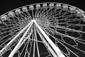 /A grande roda (reedição)...