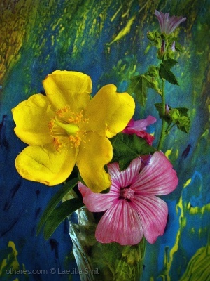 Abstrato/Wild Flowers