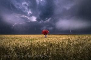 Arte Digital/Dia de Tempestade