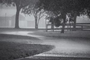 Fotojornalismo/Chuvas de verão....