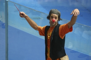 Espetáculos/O Maestro