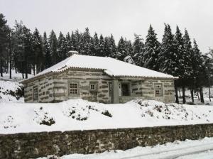 Paisagem Natural/Manto de neve
