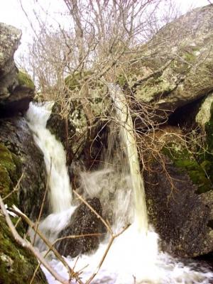 Paisagem Natural/riacho