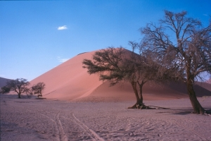 Paisagem Natural/Amanhecer no deserto...
