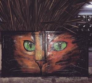 Outros/Olho de gato.