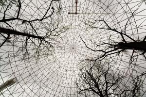 Arquitetura/O céu das aves cativas