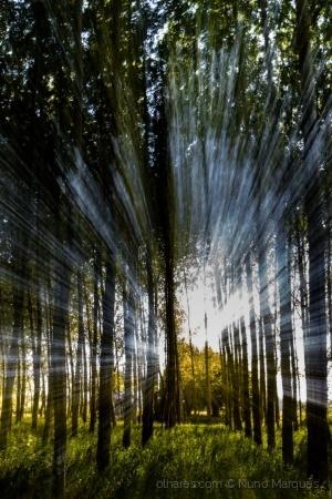 Abstrato/Jogos de luz