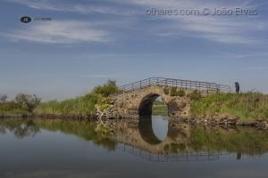 /A caminho da ponte!