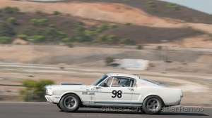 /SHELBY MUSTANG GT350