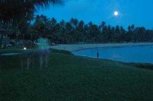 /Paraíso Nocturno