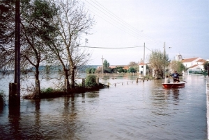 Paisagem Natural/Cheia do Rio Tejo - Pombalinho Nov_2006