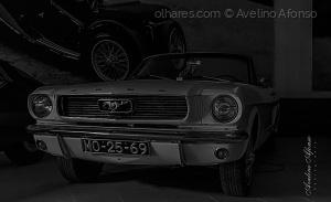 /Mustang-1966 (reliquias)