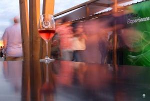 Outros/Wine Experience (Ler desc.)