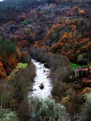 Paisagem Natural/Pela Serra do Montemuro