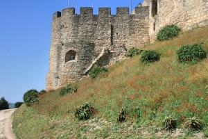 /Castelo de Torres Vedras
