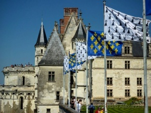 /Chateau Royal - Amboise