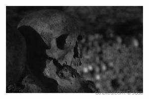 /...scary skull???