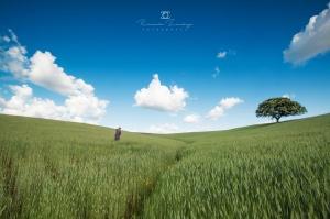 Paisagem Natural/Caçador de paisagens