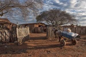 Fotojornalismo/Dia a dia no campo