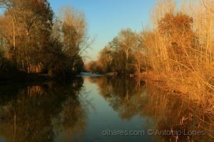 Paisagem Natural/No leito do rio