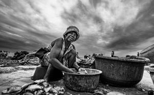 Retratos/A salga do peixe II