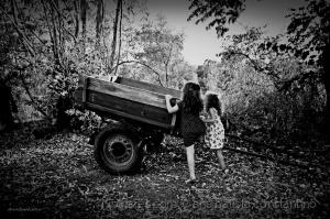 Gentes e Locais/A carroça
