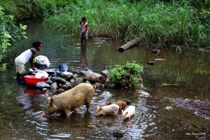 Gentes e Locais/Povo que lavas no rio..