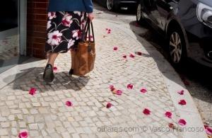 Outros/Flowers (v descr)