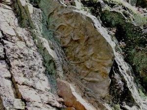 Paisagem Natural/Fósseis, Vestigios de um passado distante
