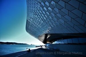 Arquitetura/A voracidade que me assola