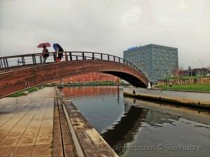 /A Ponte  Sobre a  Ria