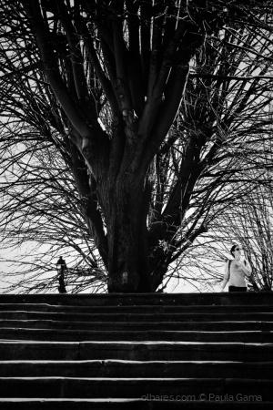 Gentes e Locais/A árvore...