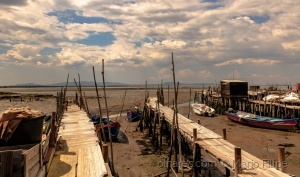 /Light and architecture of Carrasqueira ( ler )