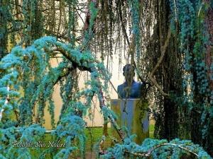 /A árvore e a Estatua