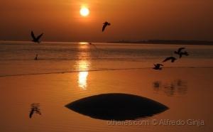 /Pôr de sol a a partir da Fundação Champalimaud - L